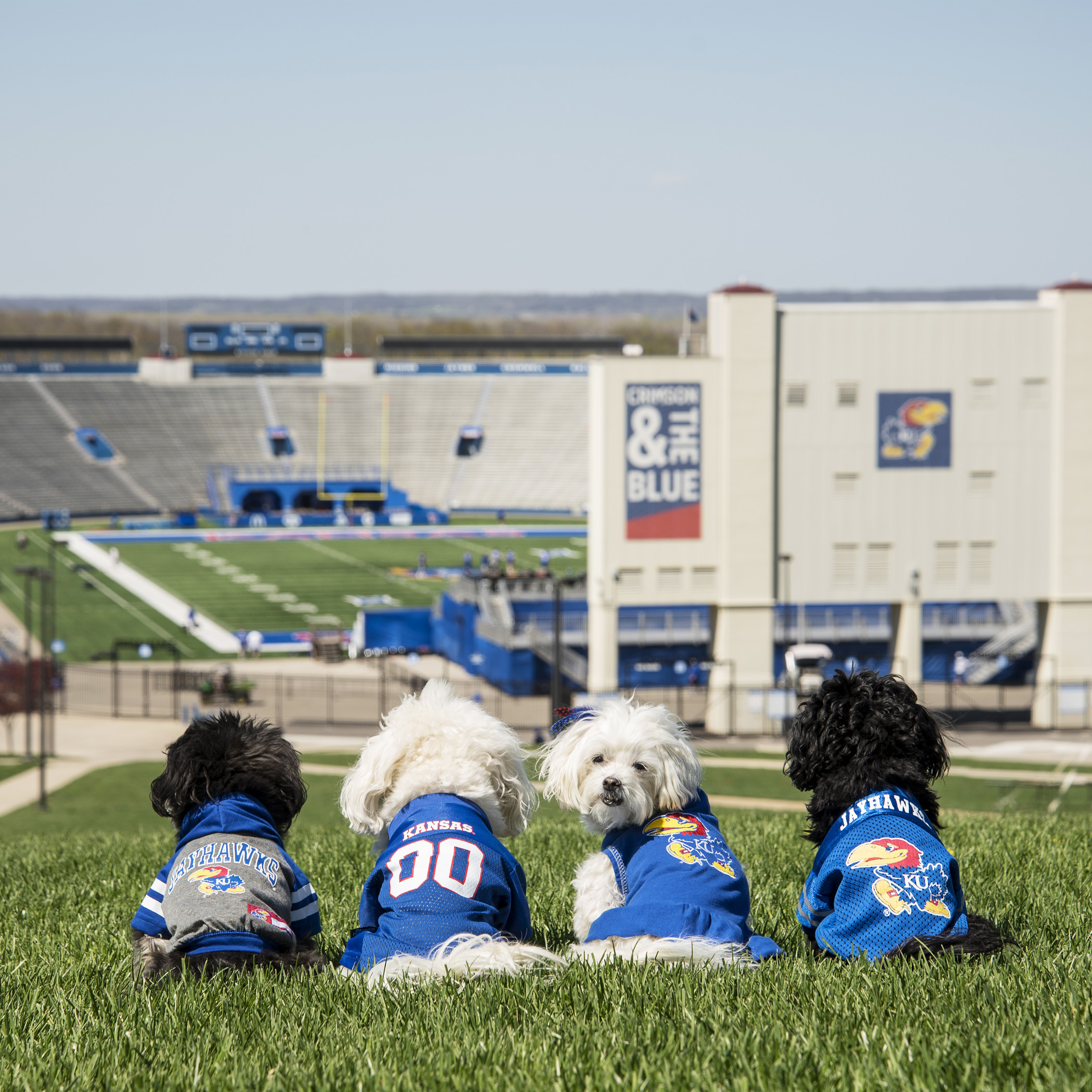 Hey, Mom, can we get any closer, so I can get a better look at all the cute football players?