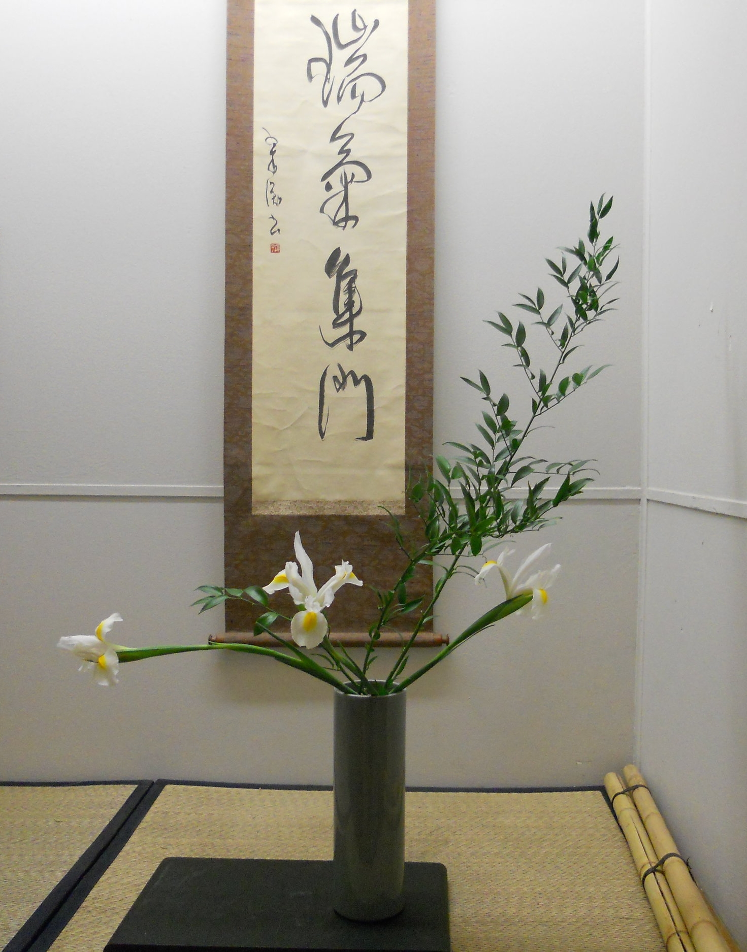 orchid show 001.JPG