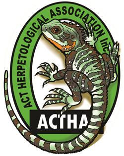 ACTHA.jpg