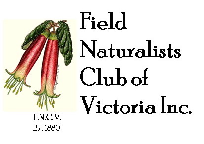 Field Naturalists Club of Victoria