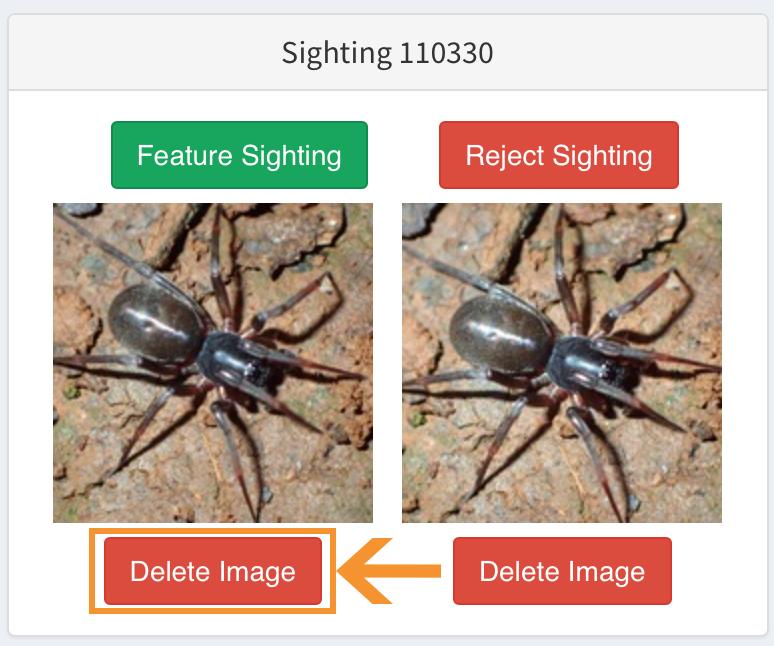' Delete Image '
