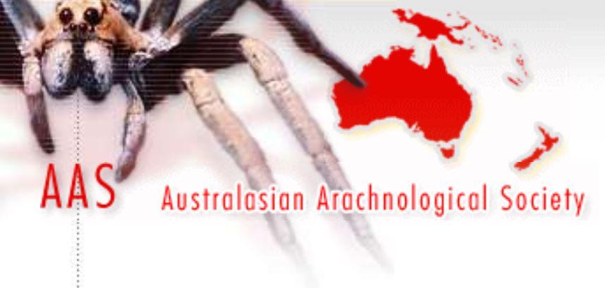 Australasian Arachnological Society