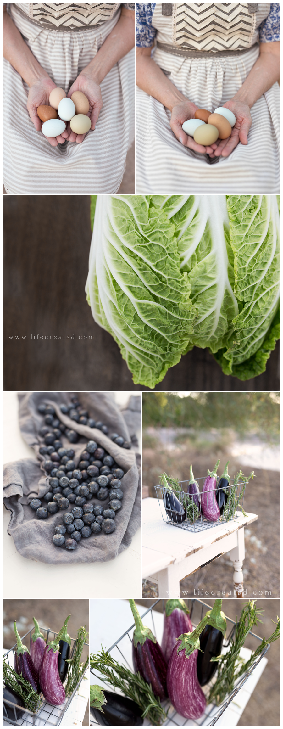 farm food photography