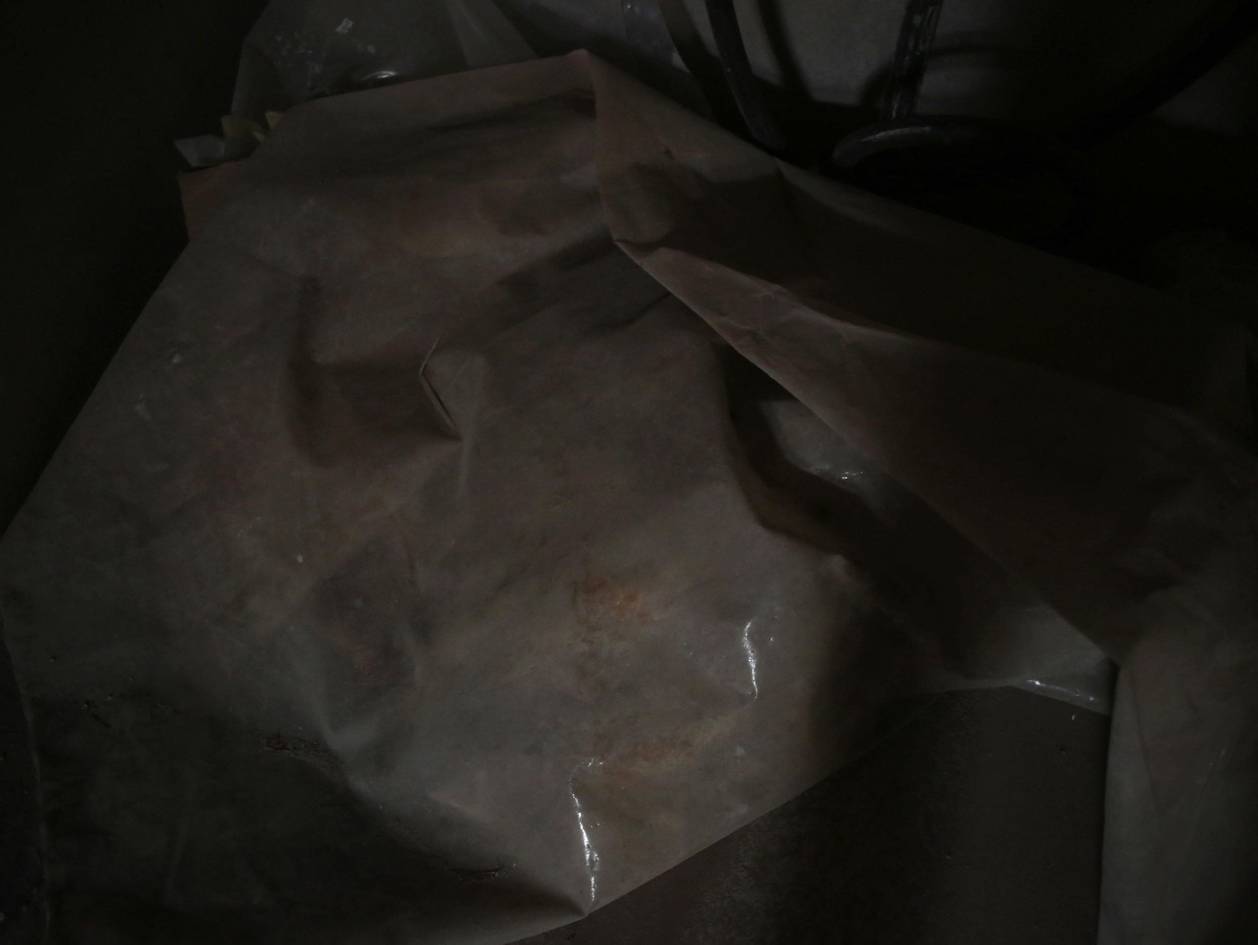 plastica I_tommaso donati 2.jpg