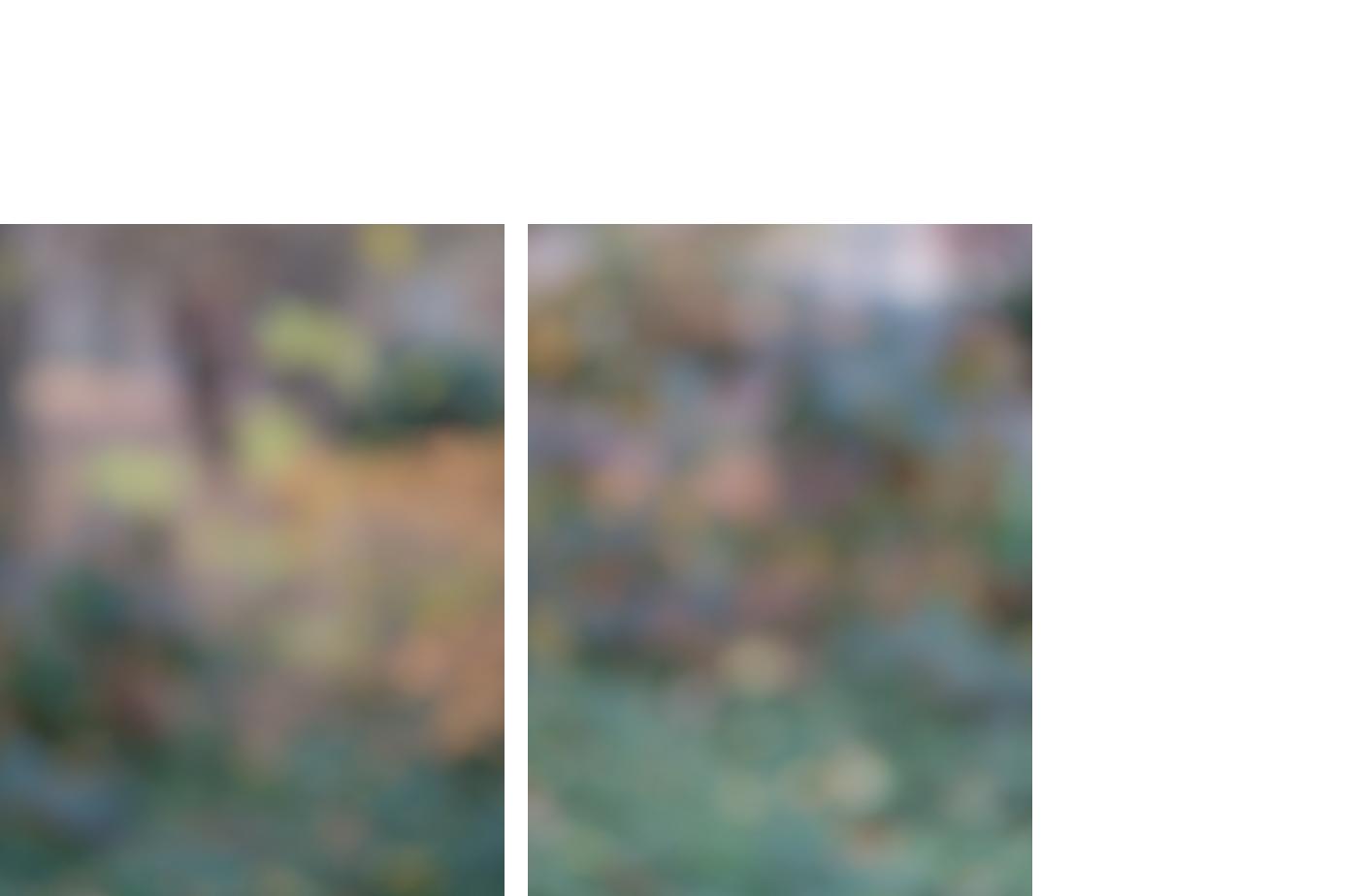 4699-28 Random Pairings #28 4699-29 Random Pairings #29  Pigment Print 5.25 x 7.00 inch Image Size 8.50 x 11.00 inch Paper Size 2 EDP / 4AP