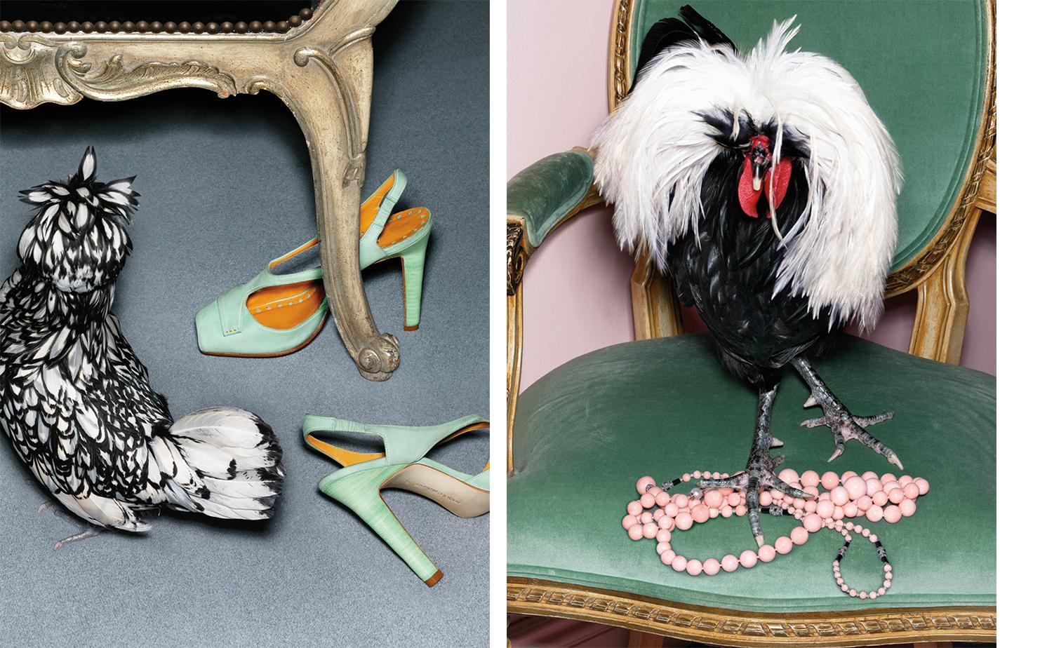 Vogue NIGHT FLIGHT   FASHION EDITOR Elissa Santisi SET DESIGN Mary Howard Studio