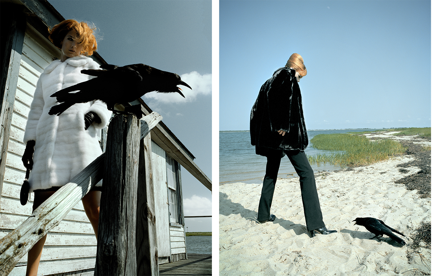 Harper's Bazaar THE FURS   FASHION EDITOR Elissa Santisi MODEL Carolyn Murphy