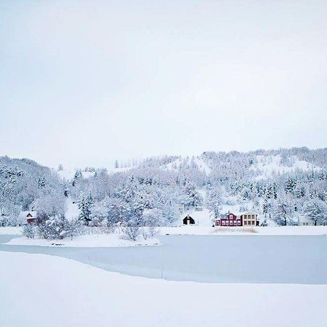 Akureyri has turned into a winter wonderland ☃ #myhometown #akureyri #iceland #winterwonderland #winter #snow