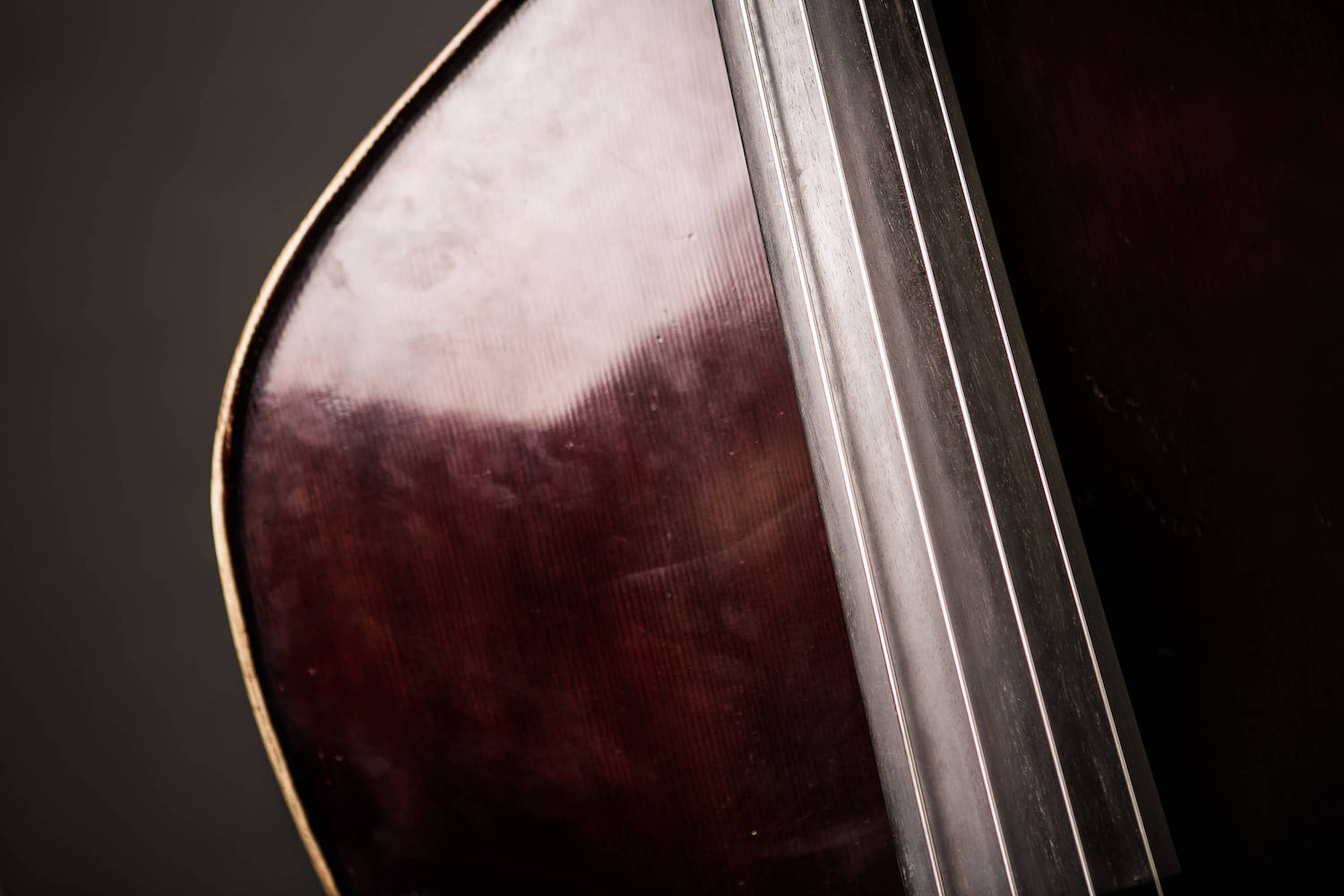 Free Double Bass Lessons Library — Discover Double Bass