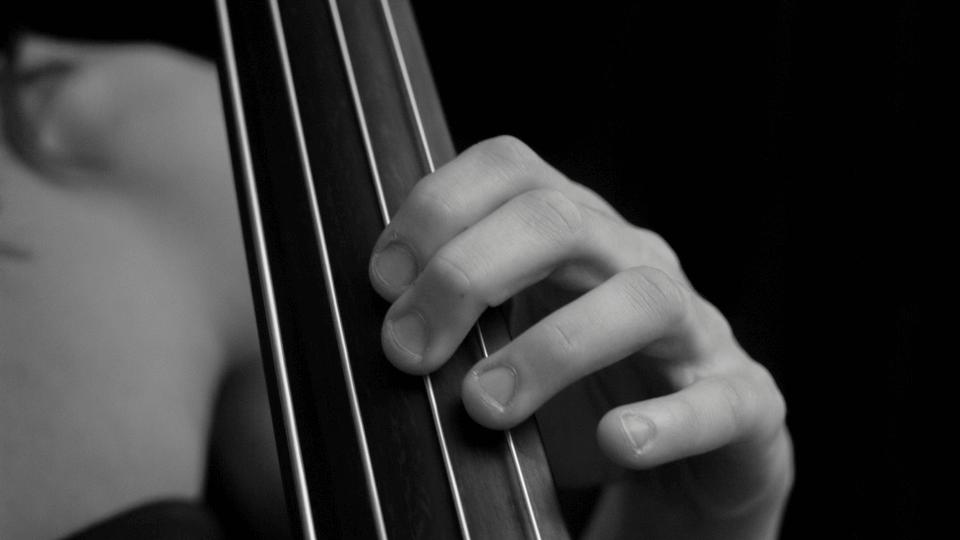 Double Bass left hand Technique - 65 lessons, 5.5hrs.