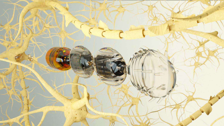 ML-Deck-Mirob-Neurons_016-Final-1500.jpg