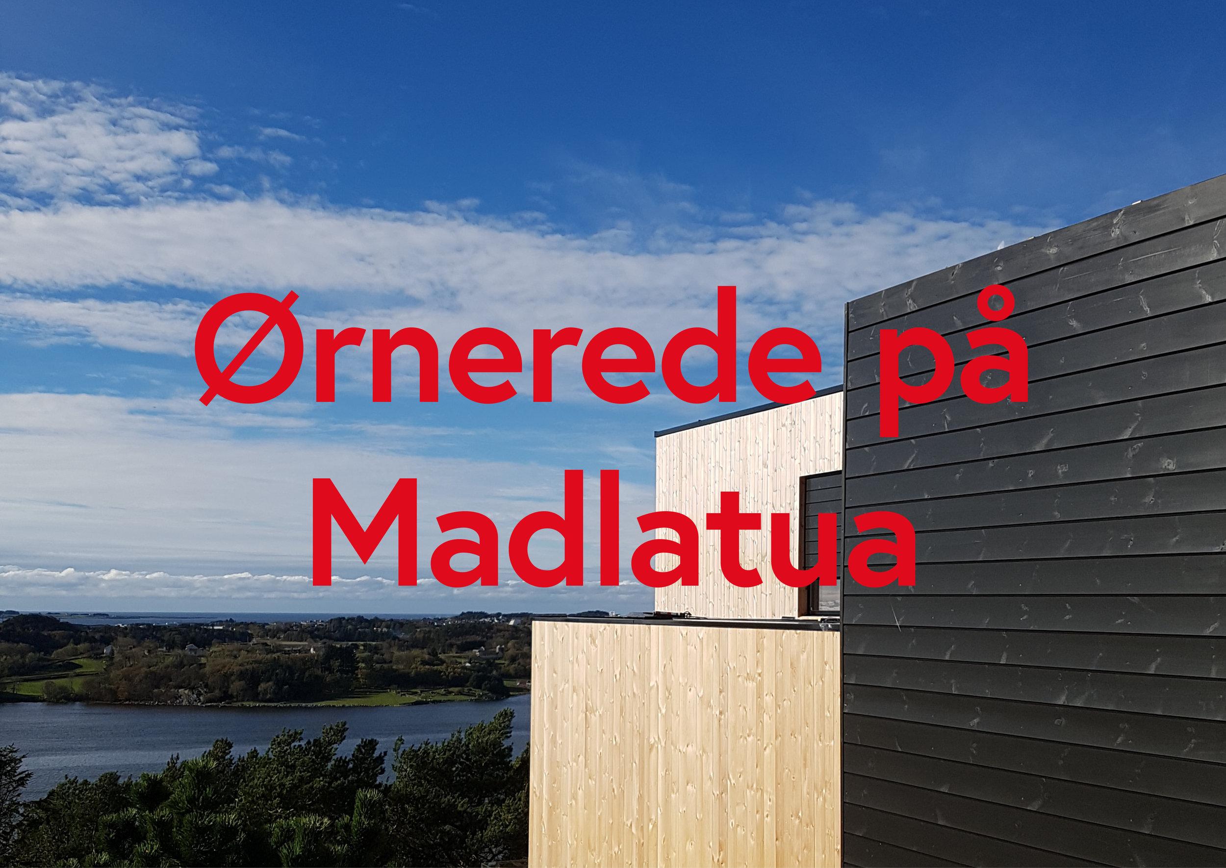 slides7.jpg