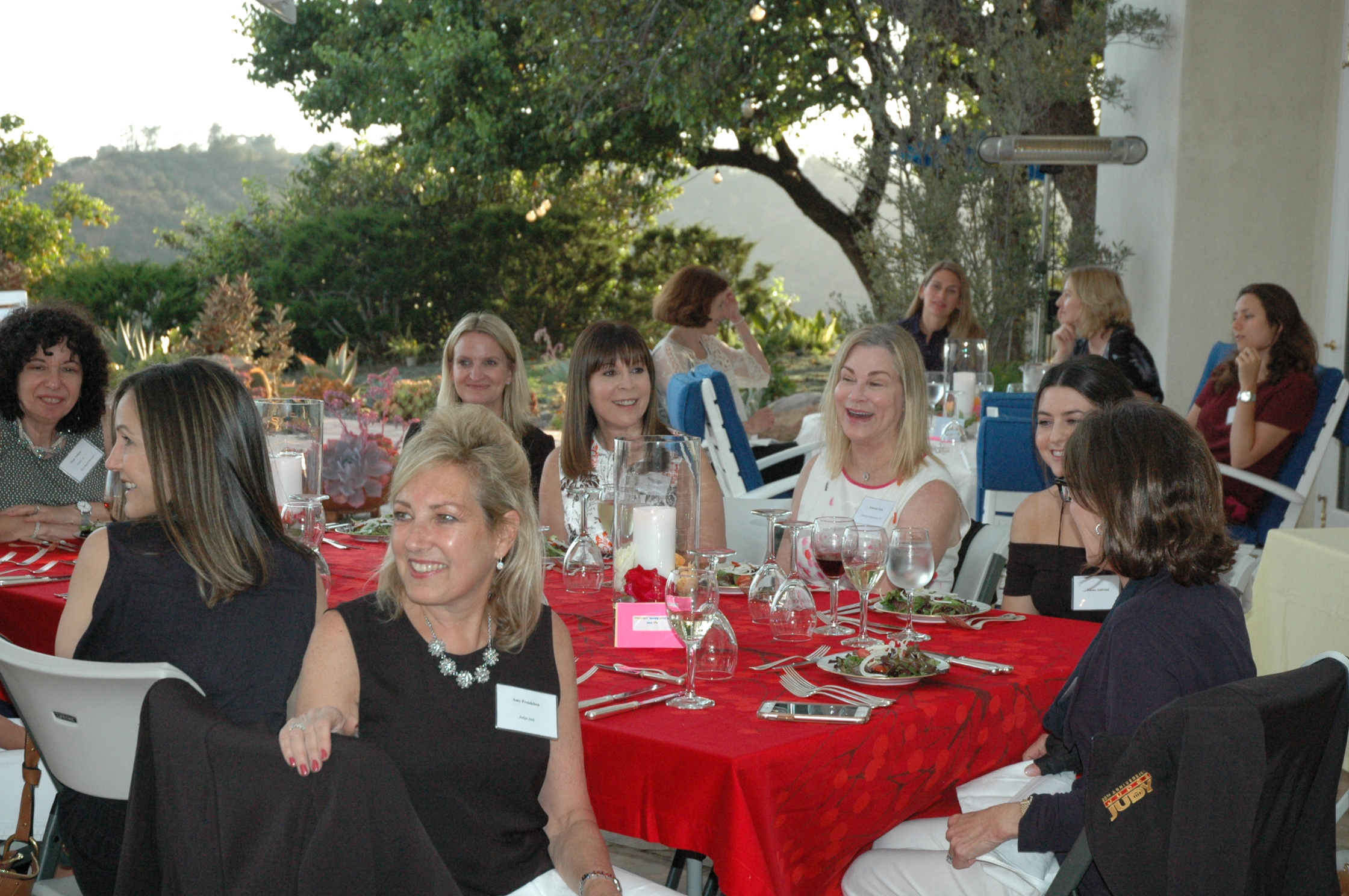 July 2017 - Members Only dinner at the home of Martha De Laurentiis