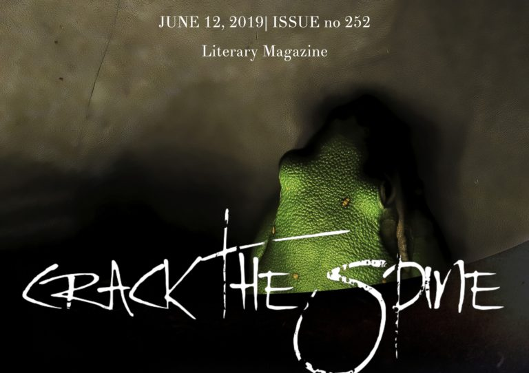 Crack-the-Spine-Literary-Magazine-Issue-252-Cover-768x542.jpeg