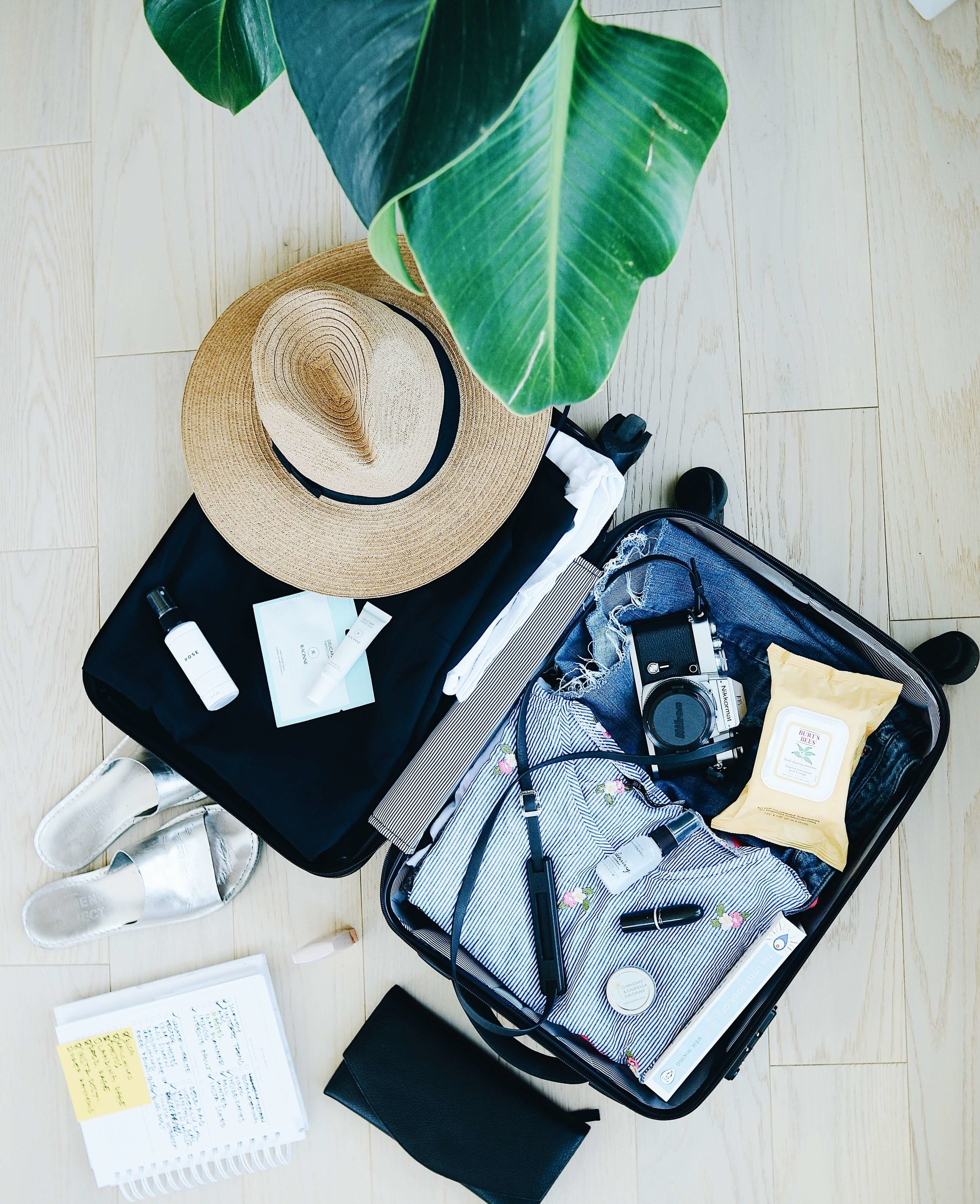 5 of the most profitable Instagram niches - travel.jpg