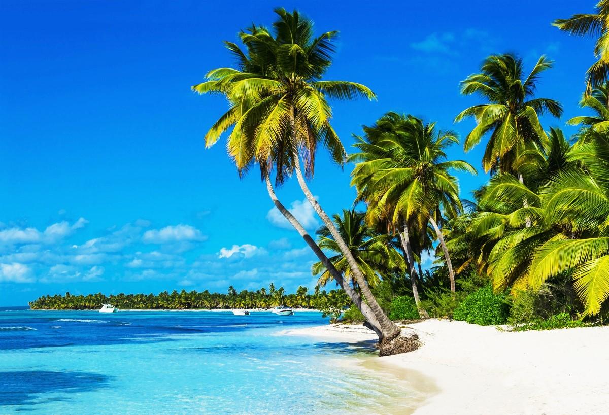 skitts_beach.jpg