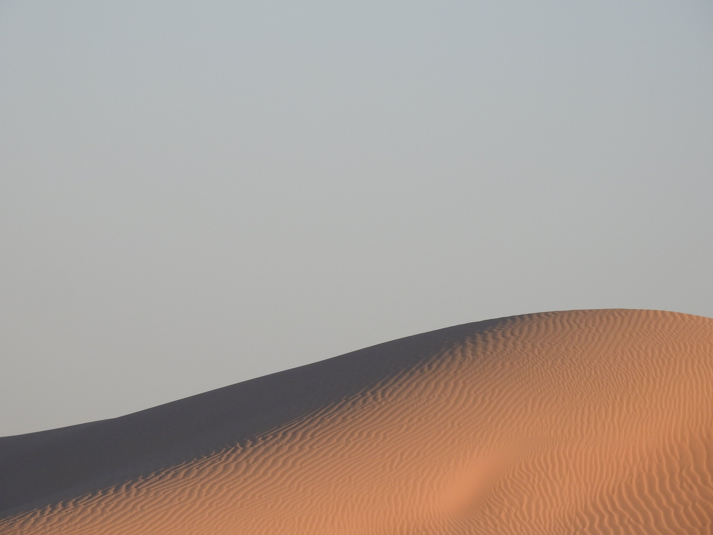 What You Learn from the Desert