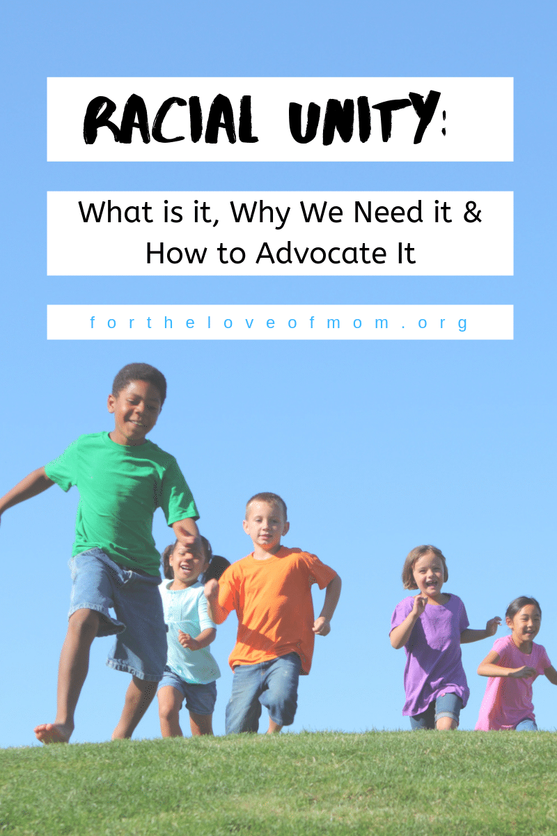 Racial Unity: What is it, Why We Need it & How to Advocate It  - For the Love of Mom - fortheloveofmom.org