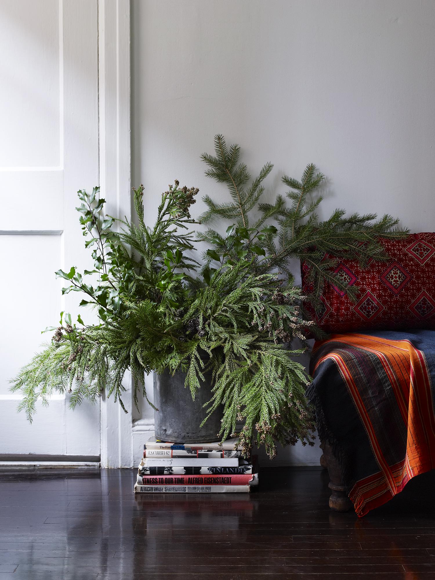 Evergreen108.jpg