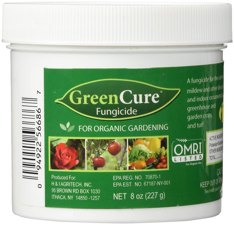 Green Cure.jpg