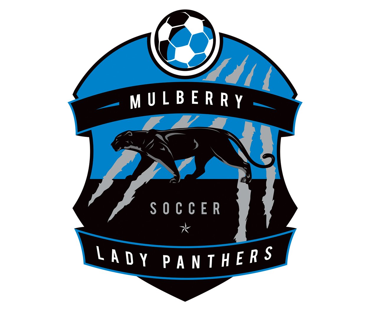custom-soccer-logo-design-by-jordan-fretz-soccer-logo-design-for-mulberry-panthers.jpg