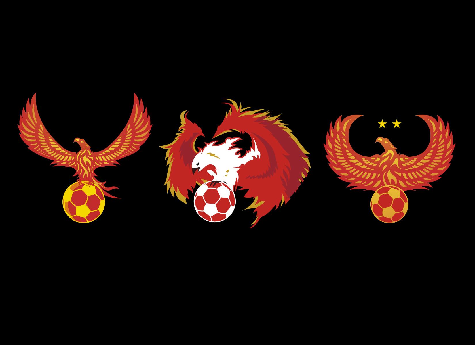 fenix-soccer-academy-custom-soccer-crest-designs-by-jordan-fretz-5.jpg