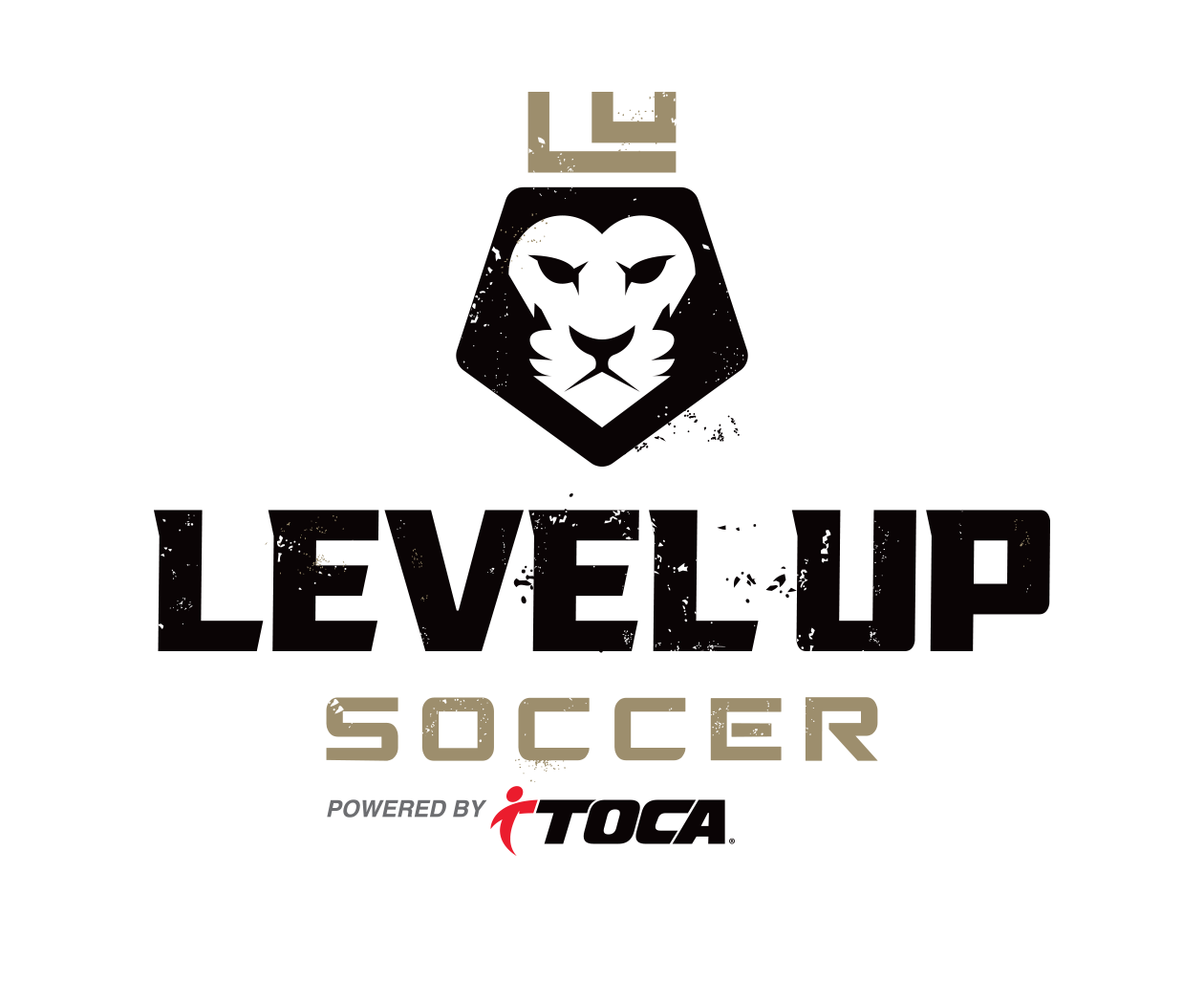 custom-sports-logo-design-by-jordan-fretz-for-level-up-soccer.jpg