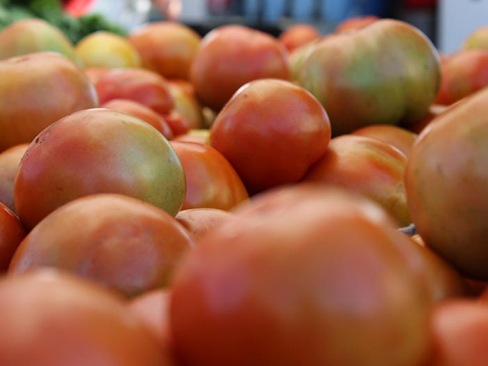 SquarespaceImage19-Tomato01.jpg