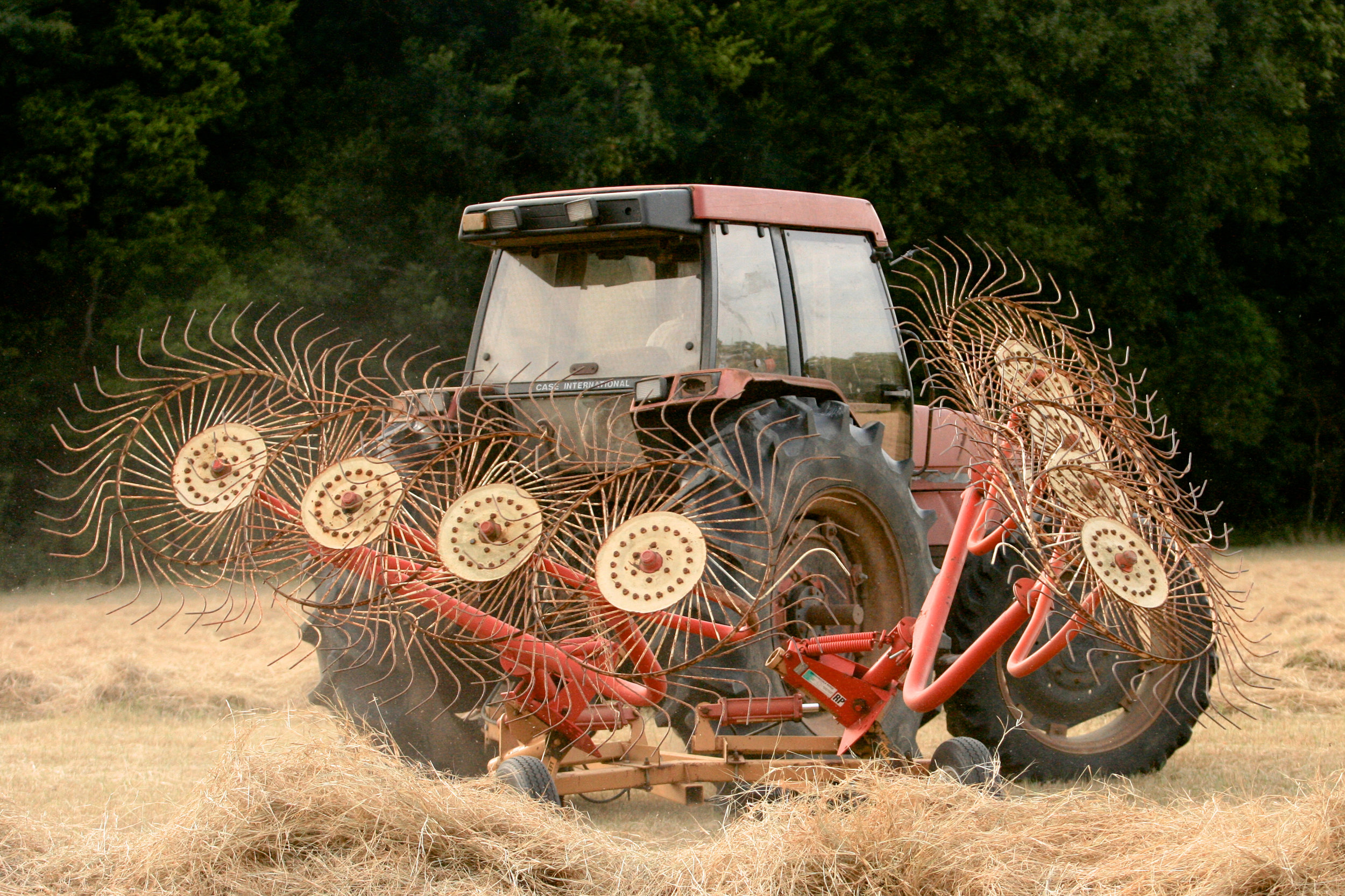 SquarespaceImage19-hay-windrows.jpg