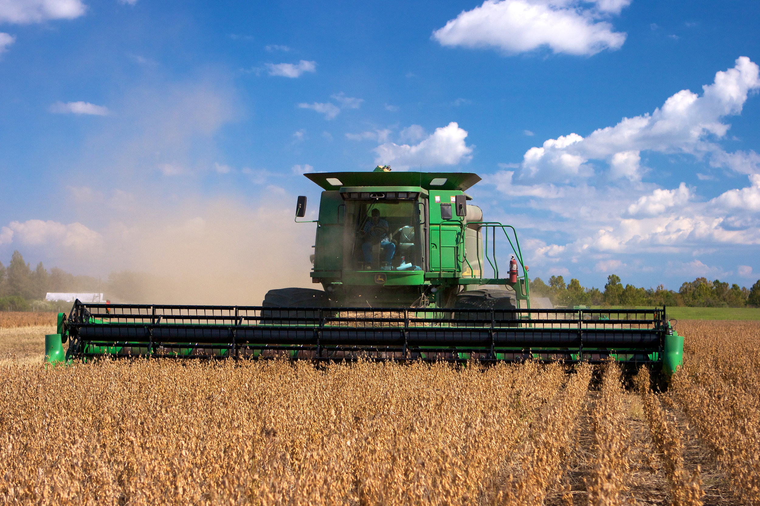 SquarespaceImage19-soybeans-harvesting.jpg