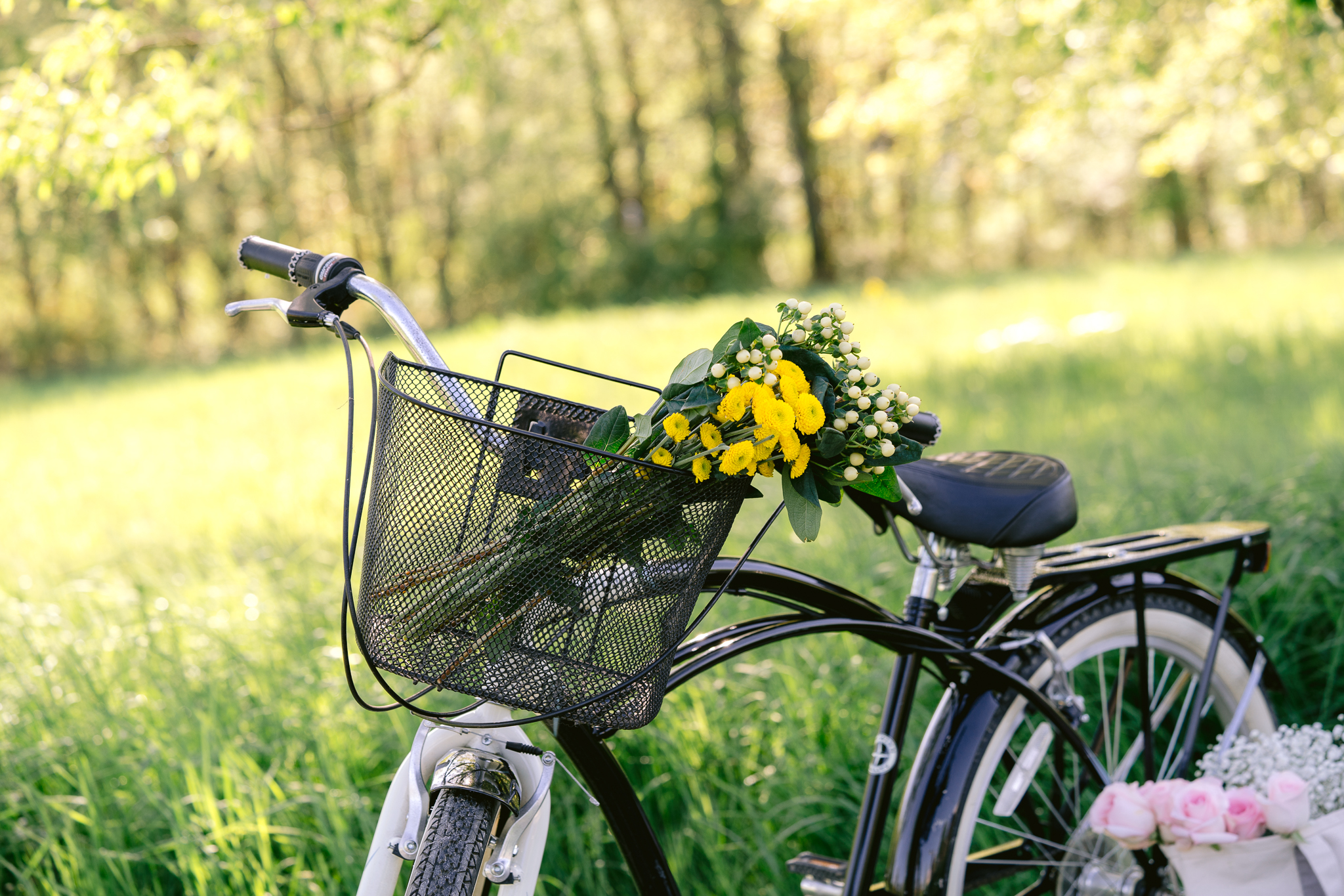 Countryside Bicycle with Flowers