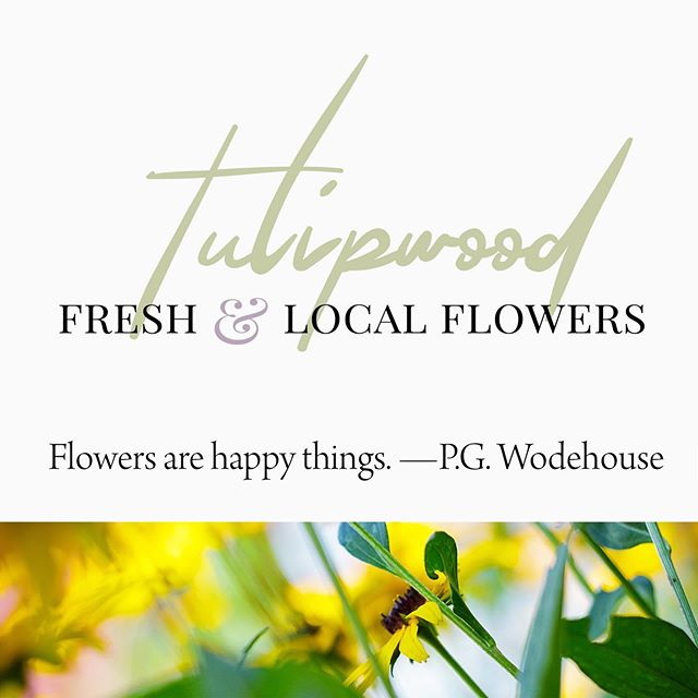 Thrilled to redesign and release a new brand, website, and copy for the south shore's own amazingly talented @svenja_dee, flower farmer and artist of Tulipwood fame. Have a dreamy visit to www.tulipwood.ca! I'm telling you, clients like this are low-hanging fruit in the beauty department. 😍 . . . #onestopshop #brandstrategy #branding #copywriting #webdesign #graphicdesign