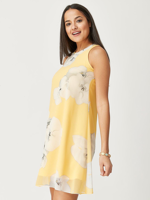 Printed Sleeveless A-Line Dress