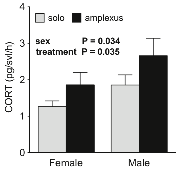 Individuals of both sexes showed an acute increase in stress hormones while engaged in mating behavior (amplexus).