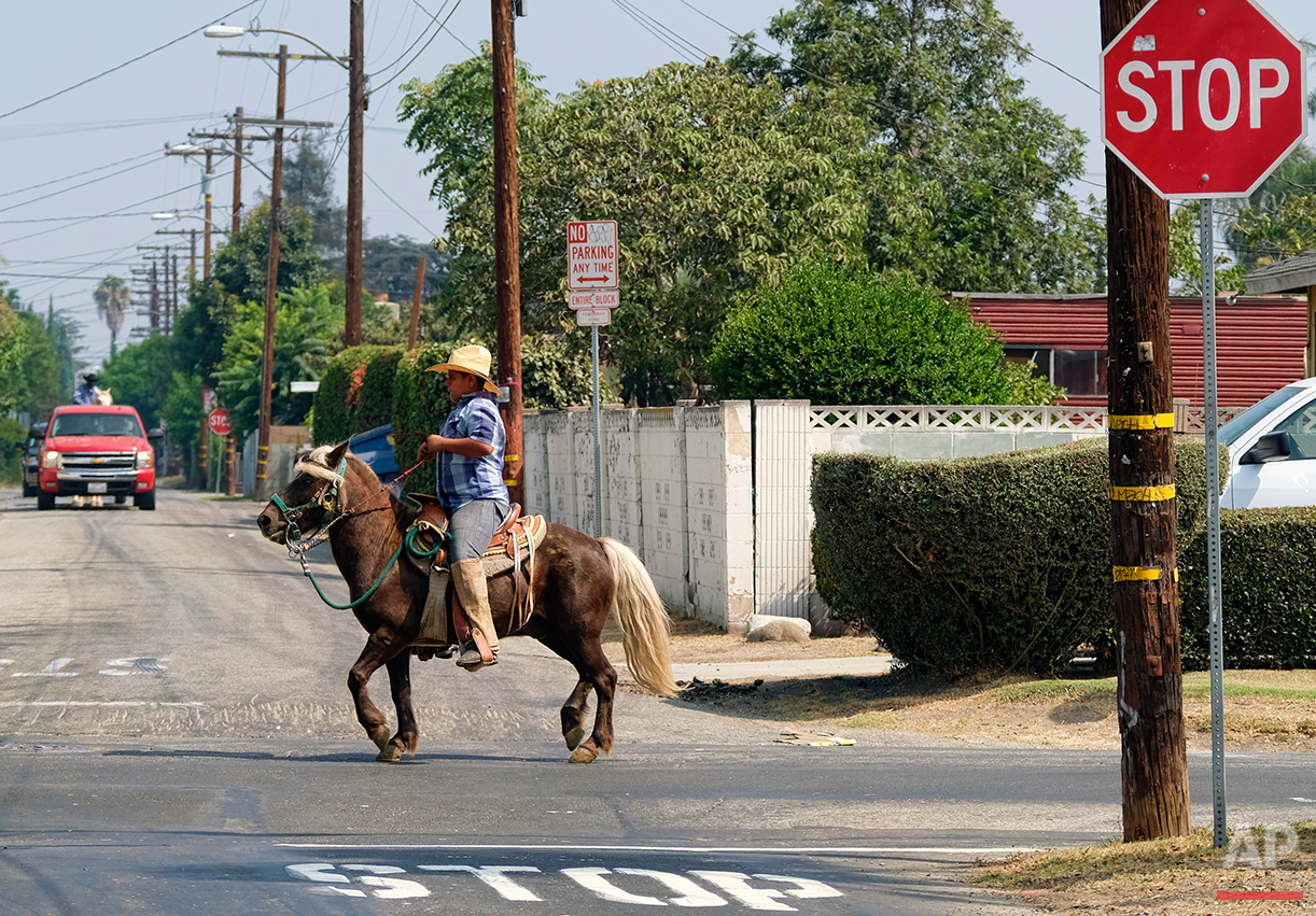 A young man rides a horse down a street in Compton, Calif., on Sunday, Aug. 7, 2016. Compton has a long and vibrant equestrian history. (AP Photo/Richard Vogel)