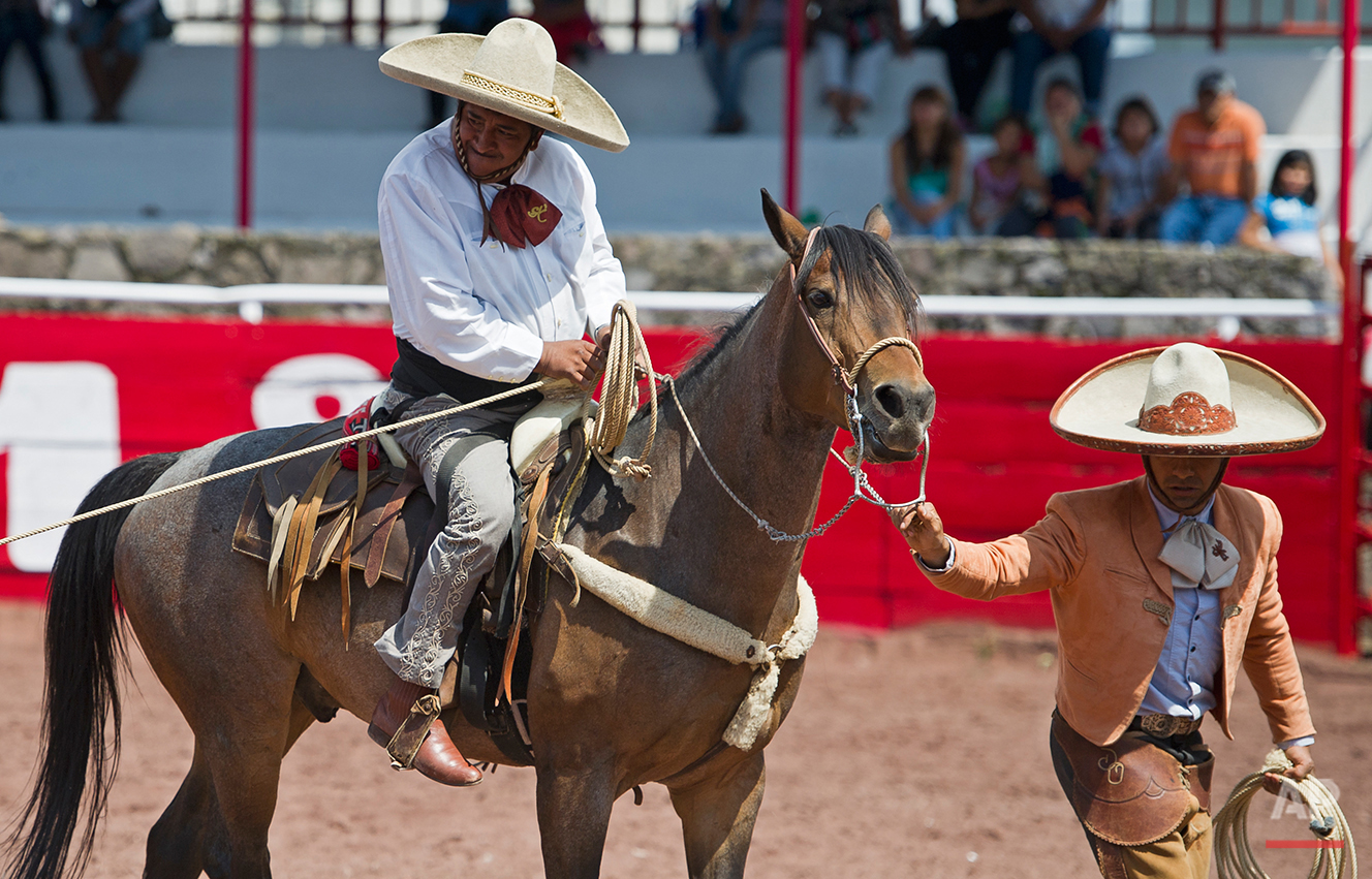 In this July 10, 2016 photo, with the help of a guide and his brace gripping his lower back, charro or Mexican cowboy Salvador Espinosa grips his lasso before downing a young bull at the Mexican rodeo arena in Cuautitlán Izcalli, Mexico. Espinoza needs help mounting the horse and doesn't rely on the traditional stirrups attached to the saddle. But once on horseback, he's a skilled equestrian and a fearless competitor. (AP Photo/Nick Wagner)