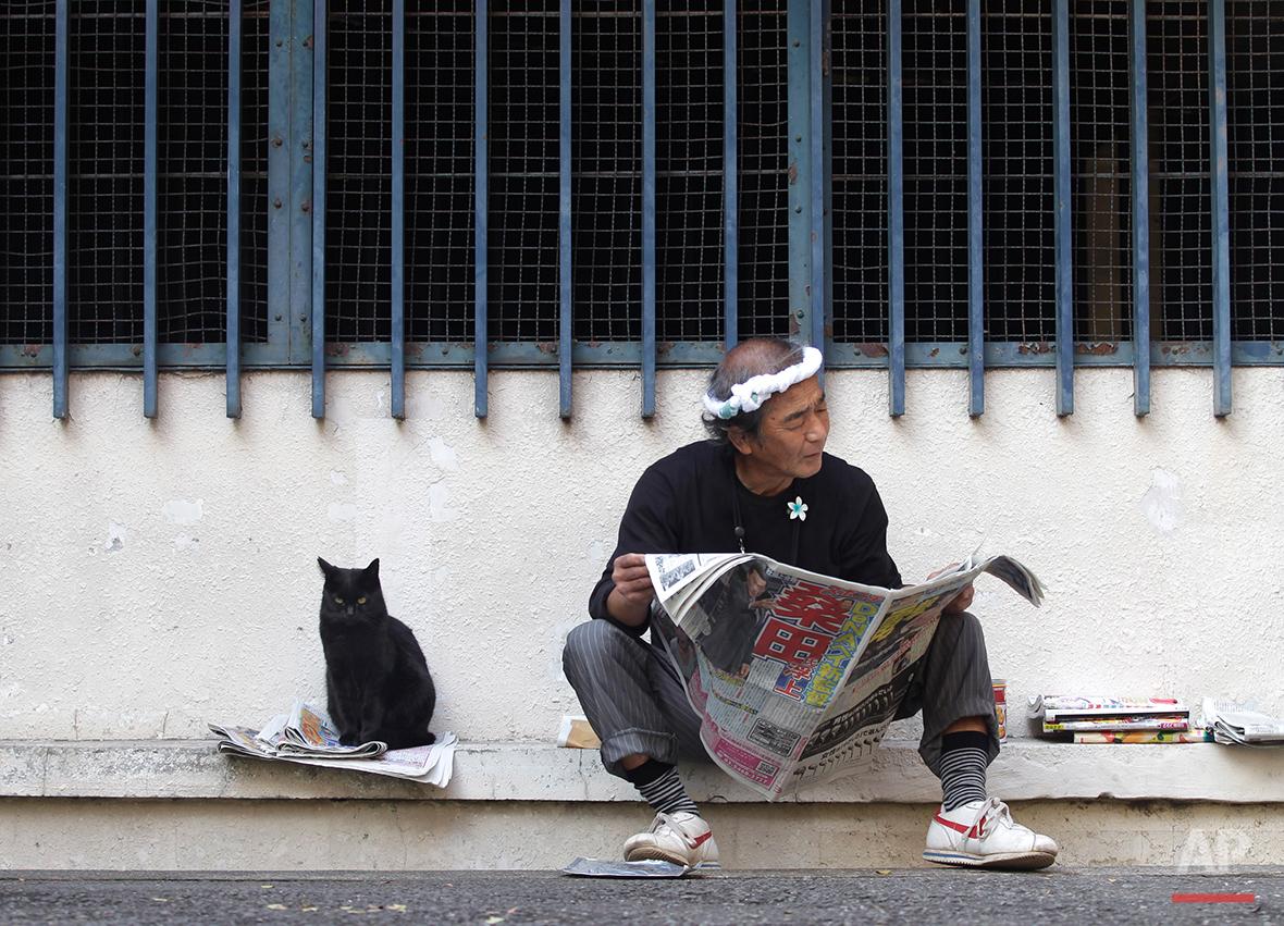 A cat sits by a man reading a newspaper at a park in Tokyo Monday, Nov. 7, 2011. (AP Photo/Shizuo Kambayashi)