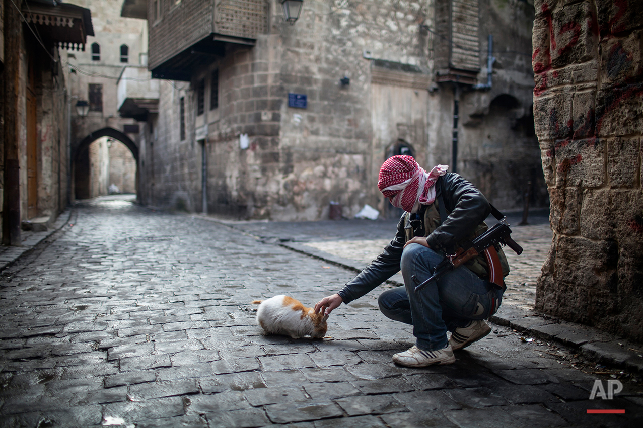 In this Sunday, Jan. 6, 2013 photo, A Free Syrian Army fighter feeds a cat bread in the old city of Aleppo, Syria. (AP Photo/Andoni Lubaki)