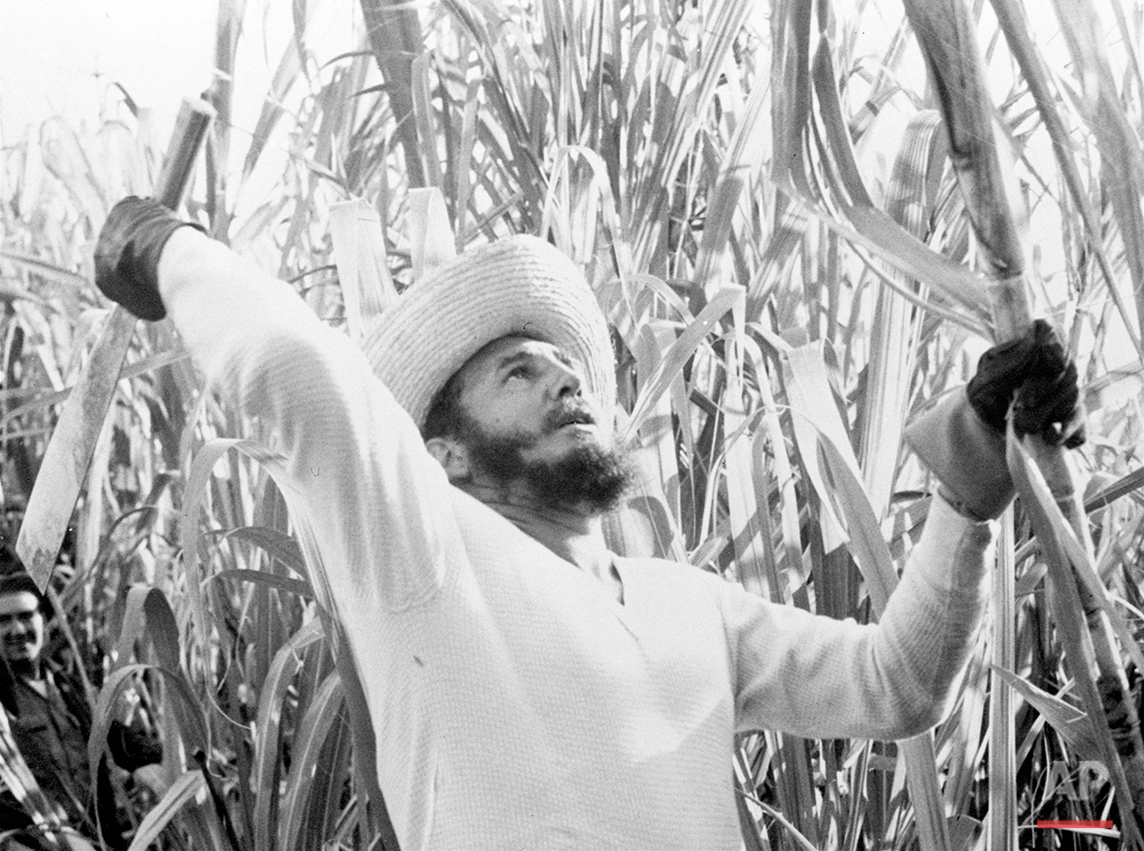In this Feb. 13, 1961 photo, Prime Minister Fidel Castro went cane cutting with thousands of other volunteer workers, and official announcements said he sliced off over 9,000 pounds of cane. As Fidel Castro turn 90 on Aug. 13, 2016, many Cubans openly describe themselves as capitalists, and say time has proven that Castro's economic ideas do not work. They praise Cuba's low crime, its health and educational benefits, its investments in making cultural activities and sports available to all, and its support for putting family and friends before work obligations. (AP Photo)