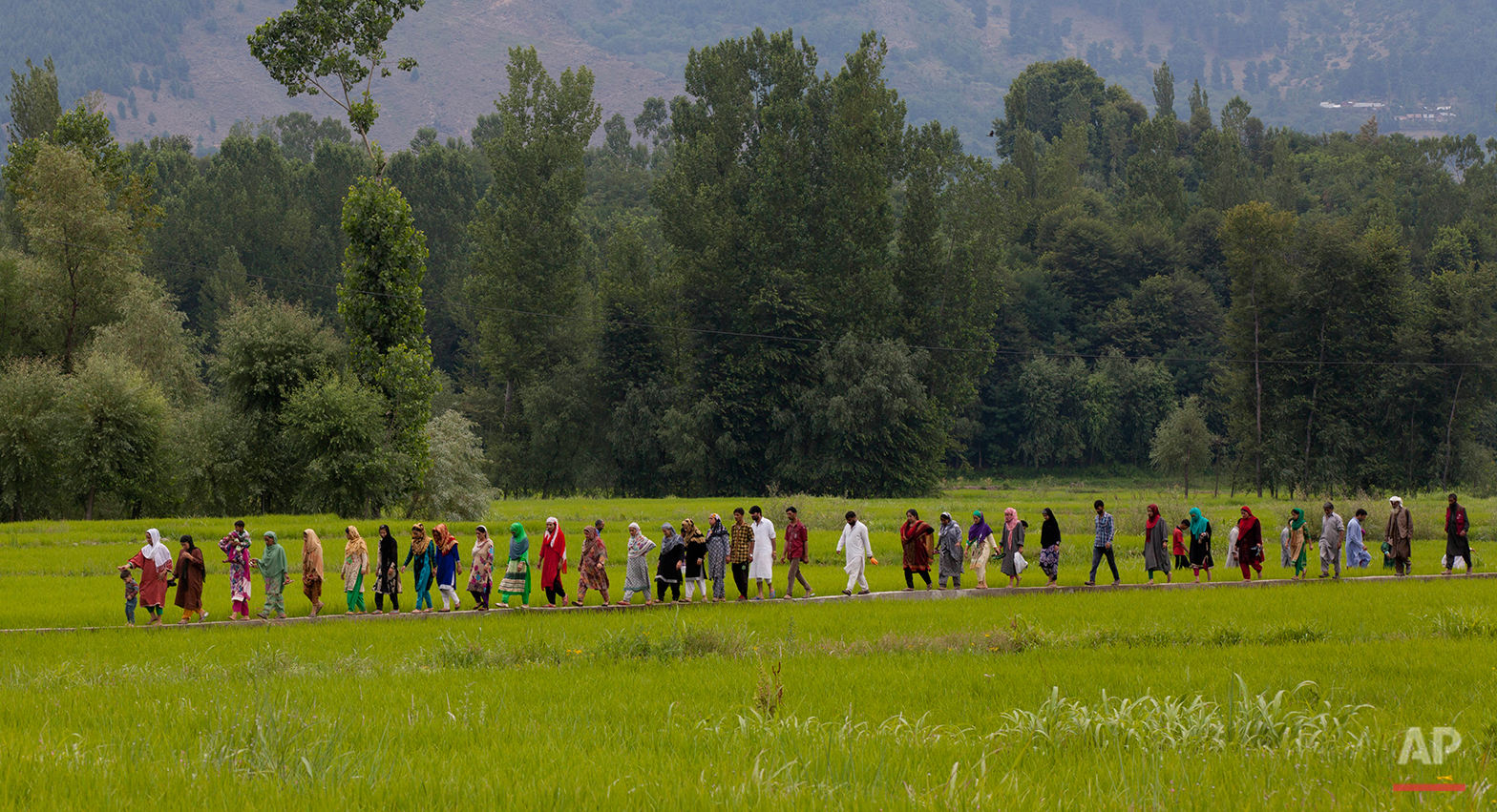 Kashmiri villagers walk to attend the funeral of Burhan Wani, chief of operations of Indian Kashmir's largest rebel group Hizbul Mujahideen, in Tral, some 38 Kilometers (24 miles) south of Srinagar, Indian controlled Kashmir, Saturday, July 9, 2016. Indian troops fired on protesters in Kashmir as tens of thousands of Kashmiris defied a curfew imposed in most parts of the troubled region Saturday and participated in the funeral of the top rebel commander killed by Indian government forces, officials and locals said. (AP Photo/Dar Yasin)
