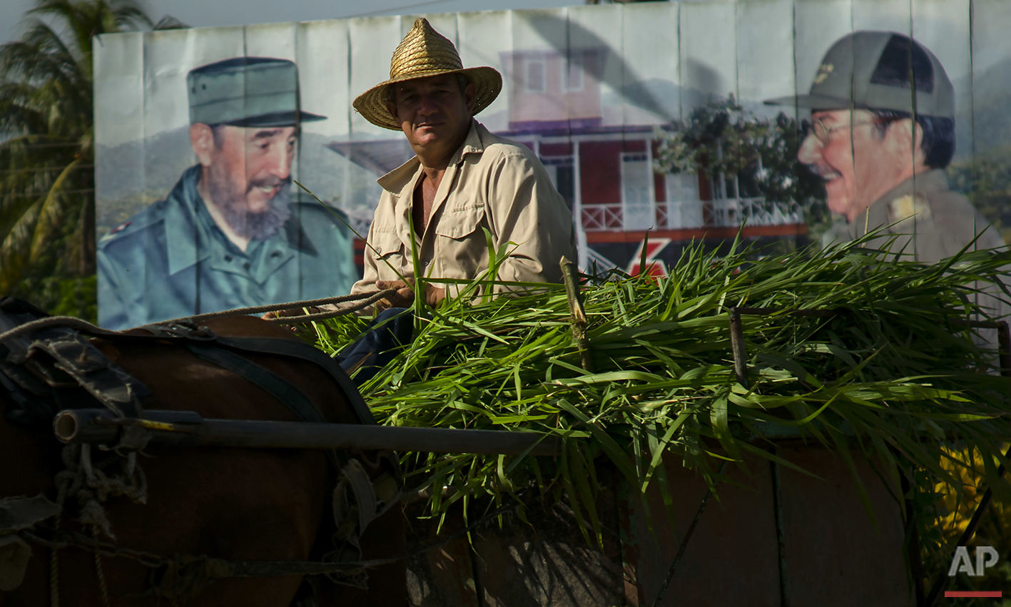 In this June 14, 2016 photo, a farmer carrying grass to feed his animals steers his horse-drawn cart past a welcome sign featuring brothers Fidel and Raul Castro, at the entrance of Biran where the Castro's were born in eastern Cuba. Many of the area's young people have migrated to Cuban cities or overseas, leaving parents and grandparents working the land. (AP Photo/Ramon Espinosa)