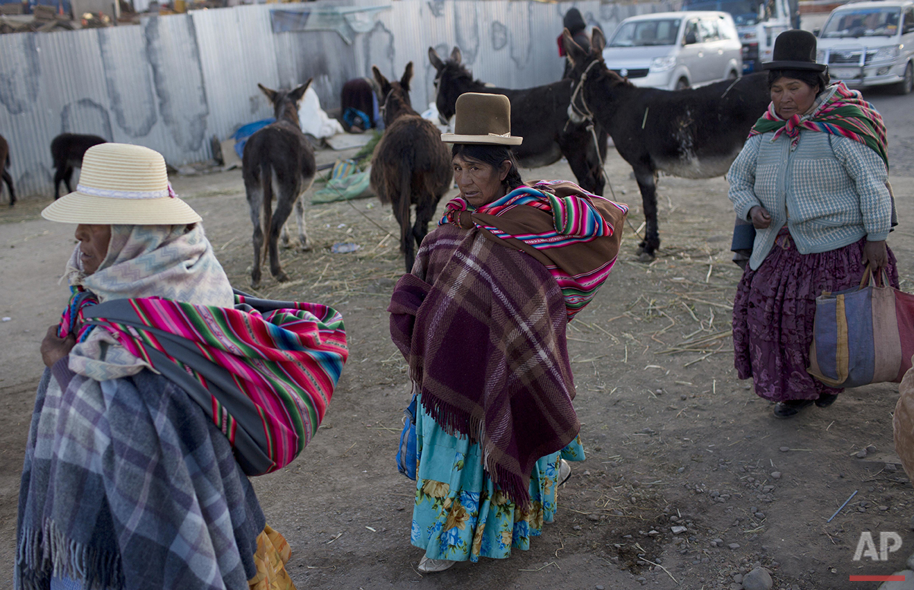 In this May 24, 2016 photo, Aymara indigenous women walk past donkeys that are used for their milk in El Alto, Bolivia. People drink a glass of fresh donkey milk, believing it will fight respiratory problems during the raw winter of the Bolivian Andes. (AP Photo/Juan Karita)