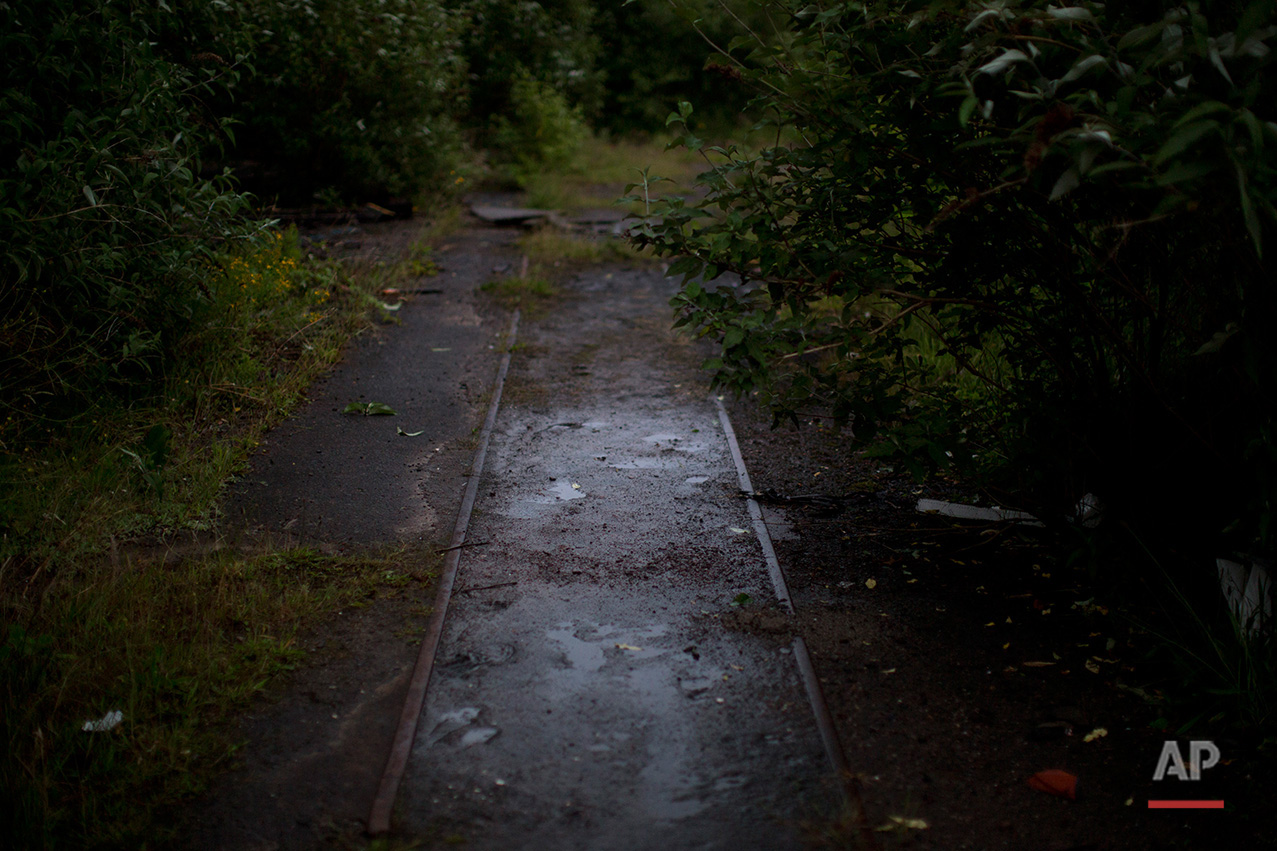 In this Thursday, June 30, 2016 photo, an old train track is partially covered by mud and vegetation at the Penallta colliery in Hengoed, South Wales.  (AP Photo/Emilio Morenatti)