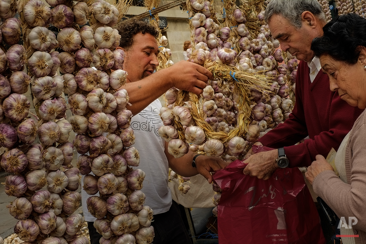 Spain Garlic Fair