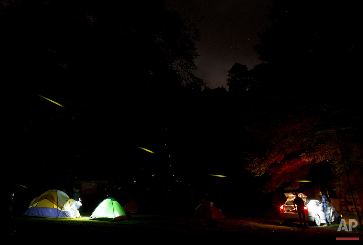 "In this July 22, 2016 photo, tourists set up camp inside the Santa Clara Firefly Sanctuary, near Nanacamilpa, Tlaxcala state, Mexico. ""If we don't limit access,"" says Santa Clara's Jose Flores Nava, ""we will wipe out the fireflies. There are centers that accept up to 3000 visitors in a weekend. Imagine how much trash they leave, the pollution, and to guide 3000 people, at minimum we need 100 guides, which certified there aren't. If all those people go alone, they will destroy the fireflies' habitat."" (AP Photo/Rebecca Blackwell)"