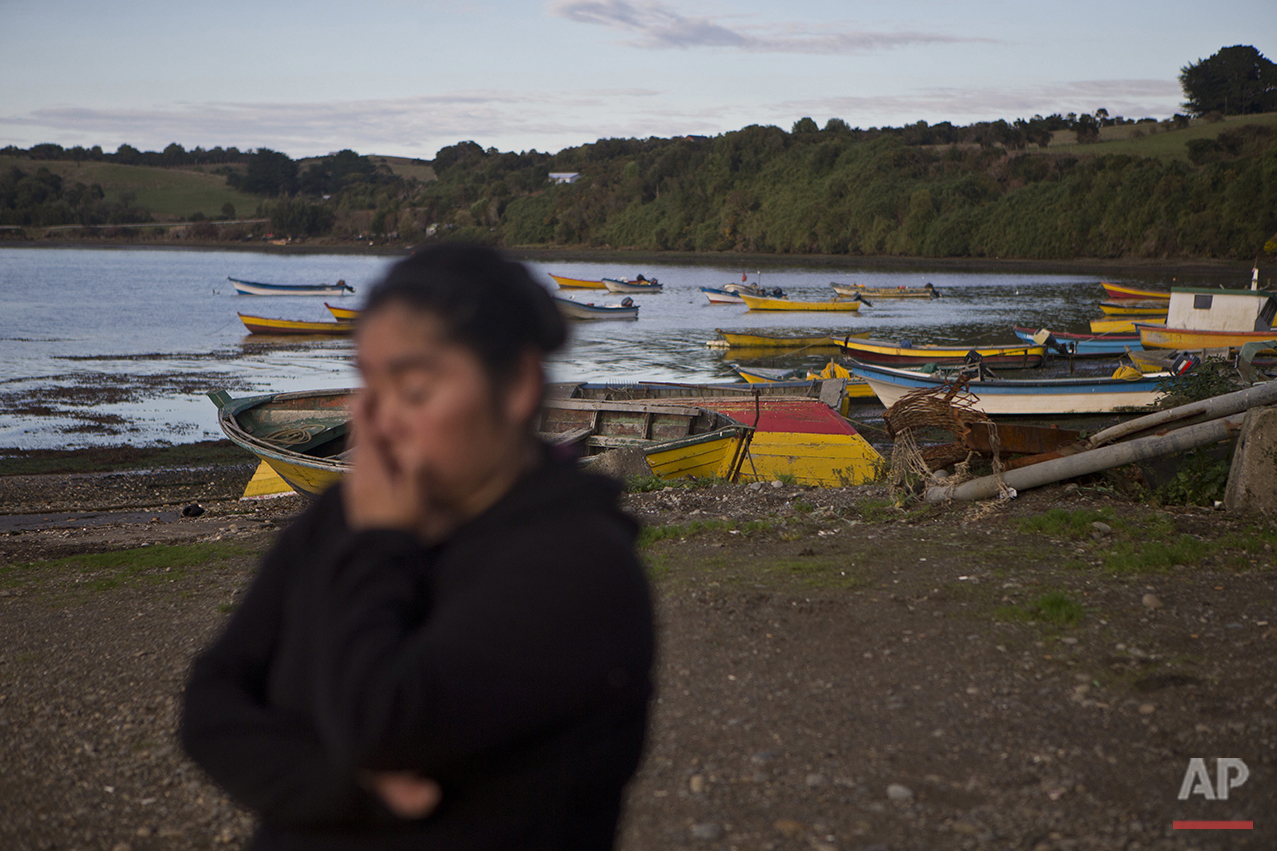 "In this May 10, 2016 photo, small scale fisherwoman Marisol Millaquien stands on the shore backdropped by idle boats in the fishing village Quetalmahue, on Chile's Chiloe Island, during the country's worst ever ""red tide"" environmental disaster. ""They killed our ocean,"" said Millaquien, who has been out of work for three weeks due to a toxic algal bloom that is threatening the livelihood of many in this archipelago located in the Pacific Ocean. (AP Photo/Esteban Felix)"