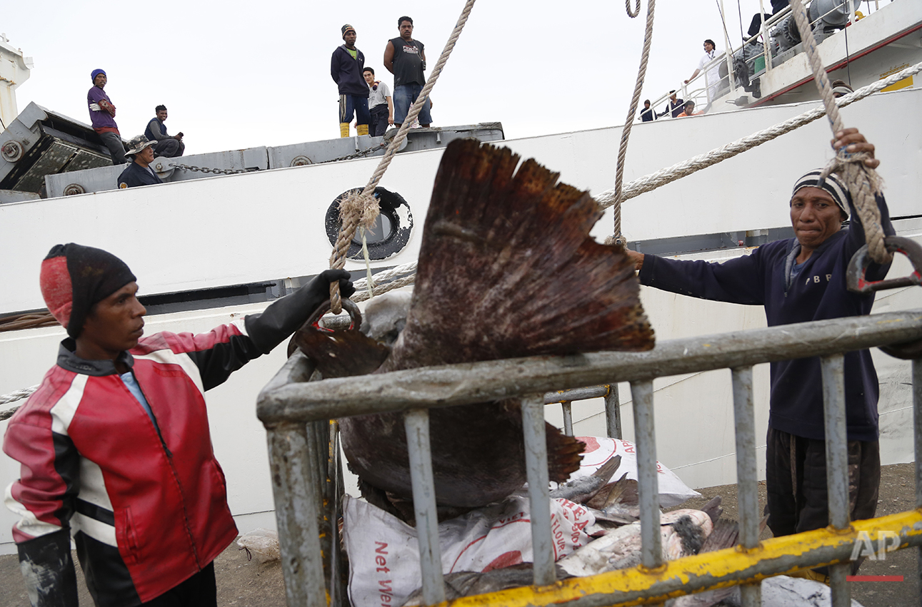 In this Saturday, Nov. 22, 2014 photo, workers in Benjina, Indonesia, load fish into a cargo ship bound for Thailand. Seafood caught by slaves mixes in with other fish at a number of sites in Thailand, including processing plants. U.S. Customs records show that several of those Thai factories ship to the United States. (AP Photo/Dita Alangkara)