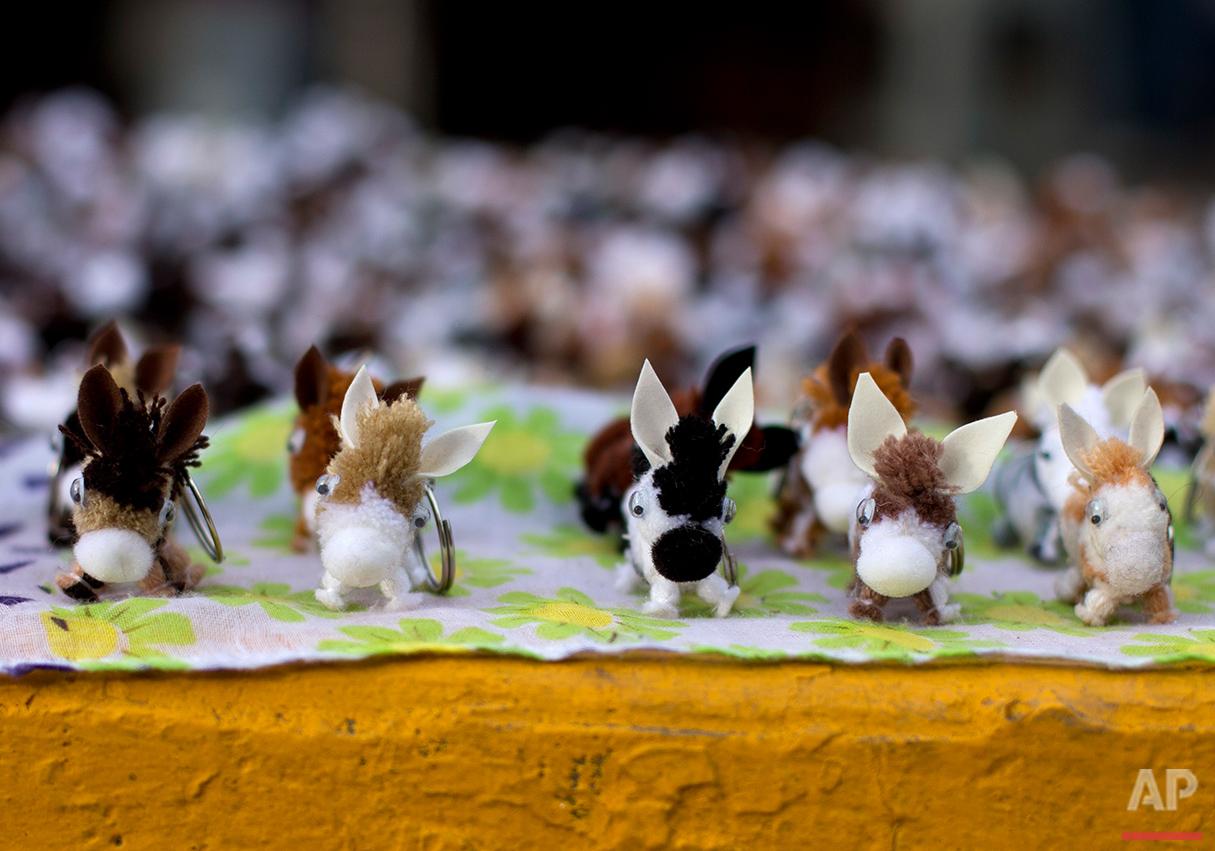 Mexico Donkey Fair Photo Gallery