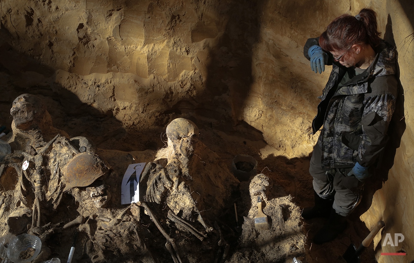 In this photo taken on Tuesday, Aug.  18, 2015, a member of a volunteer group searching for the remains of Soviet soldiers killed during WWII, looks at remains of Soviet soldiers uncovered in a  burial site made in 1943, to be reburied in an official cemetery, near Sinyavino, 50 kms (31 miles) east of St. Petersburg, Russia. Volunteer search groups have become increasingly popular in Russia in recent years, attracting people of various ages and professions who spend their weekends and vacations digging for remains on former battlefields. They have recovered and buried the remains of thousands of Red Army soldiers. (AP Photo/Dmitri Lovetsky)