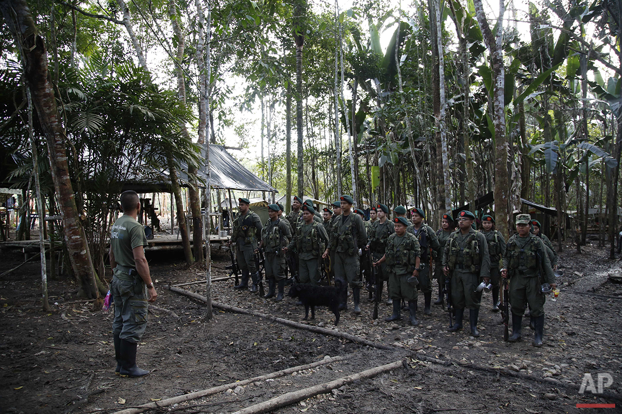 In this Aug. 11, 2016 photo, rebels of the 48th Front of the Revolutionary Armed Forces of Colombia, or FARC, stand in formation in the southern jungles of Putumayo, Colombia. (AP Photo/Fernando Vergara)